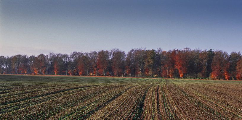 Groote Heide 1 van Deshamer