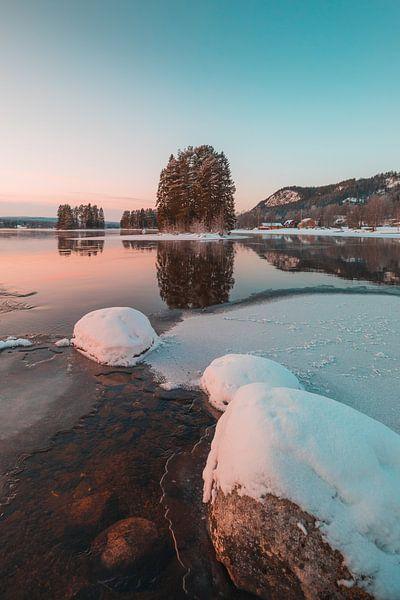 Zweden rivier in de winter van Andy Troy