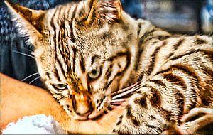 Getiegerte Katze von Margitta Frischat