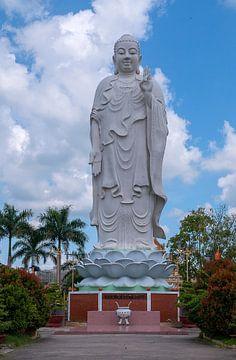 Mỹ Tho: Vĩnh Tràng tempel van Maarten Verhees