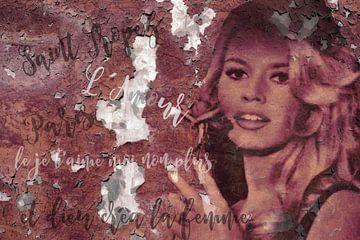 Legends - Brigitte Bardot van Christine Nöhmeier