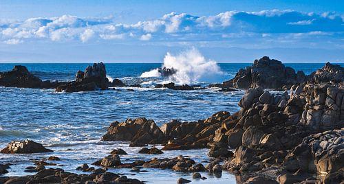 Westcoast - USA van Ricardo Bouman | Fotografie