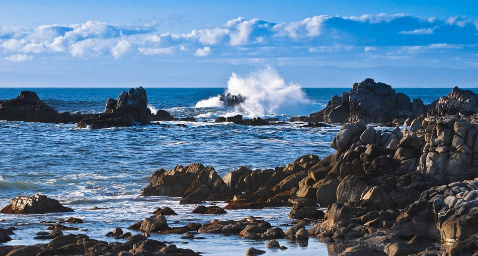 Westcoast - USA van Ricardo Bouman   Fotografie