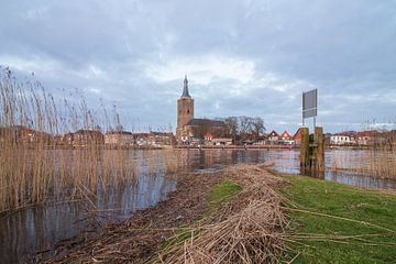 Hasselt aan het Zwartewater van Meindert Marinus