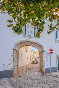 Tor und Orangen in Faro, Portugal von Bianca Kramer