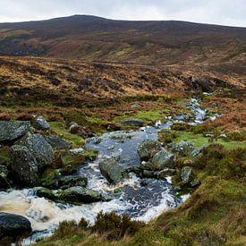 Wicklow mountains in Ierland van Steven Dijkshoorn