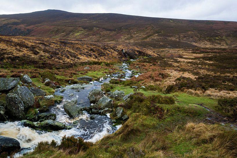 Wicklow mountains in Ierland von Steven Dijkshoorn