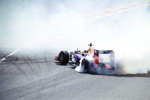 Red Bull Racing F1  van