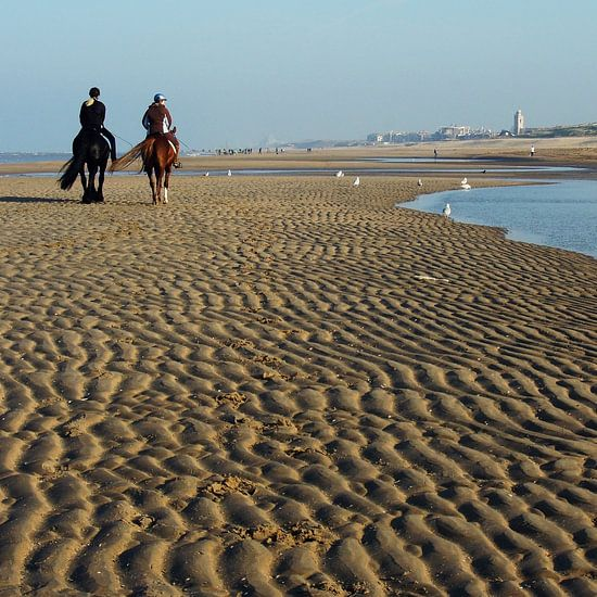 horses on the beach van Dirk van Egmond