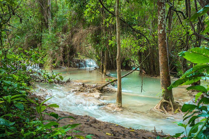 Doorkijkje bij de Kuang Si Waterval, Laos van Rietje Bulthuis