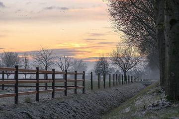 oranje lucht over de weilanden van Tania Perneel