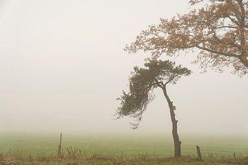Neblige Landschaft von Lieke van Grinsven van Aarle