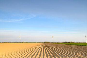Vers geploegd aardappelveld met rechte aardappelruggen van Sjoerd van der Wal