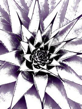 Succulent N1 van Olis-Art