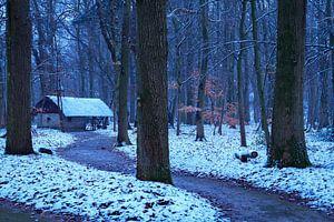 Winters sprookjesbos van Willemke de Bruin