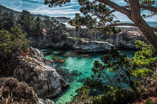 China Cove van Bas Fransen