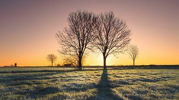Zonsopkomst tijdens een koude mooie ochtend von Erik Graumans