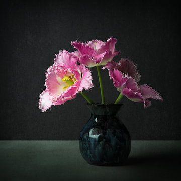 La tulipe rose, à la manière des anciens maîtres