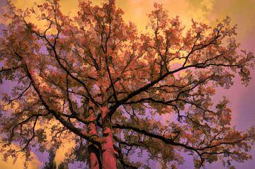 Herfst-boom van Leo Huijzer