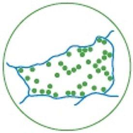 Beeldbank Alblasserwaard avatar