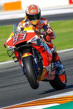 Marc Marquez/MotoGP Valencia van Marco Dek