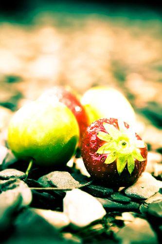 Fruit III van