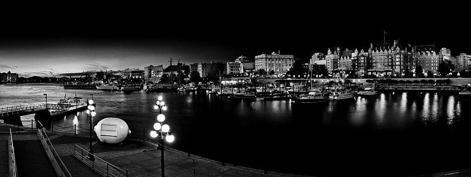 Inner Harbour with Lemon (black and white)