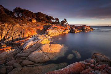 Bay of Fires - rotleuchtende Granitfelsen - von Jiri Viehmann