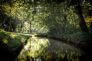 Slootje in het Leeghwaterpark in Purmerend van Jan van der Knaap