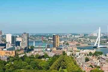 Rotterdam met de Erasmusbrug een vergezicht.