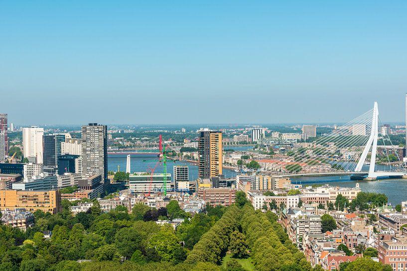 Rotterdam met de Erasmusbrug een vergezicht. van Brian Morgan