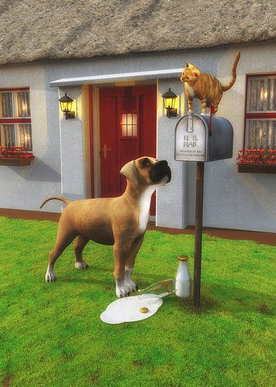 Katten – Kat bovenop de brievenbus