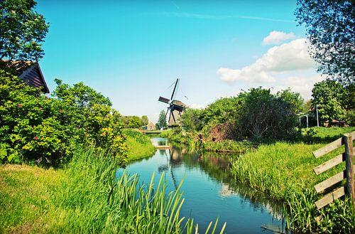 Nederlandse landschap van