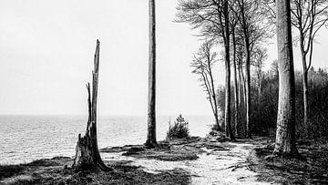 Sur la plage de la mer du Nord sur Heiko Westphalen