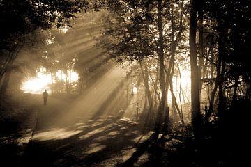 Man am Morgen Nebel von Henk Nowee