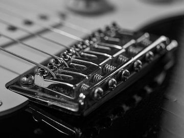 Steg einer E-Gitarre Nahaufnahme von Robin Jongerden