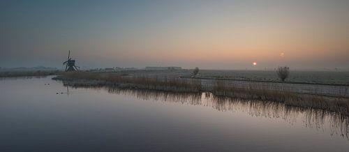 Hollandse Morgen van