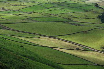 weilanden op Terceira (Azoren) van Bert Bouwmeester