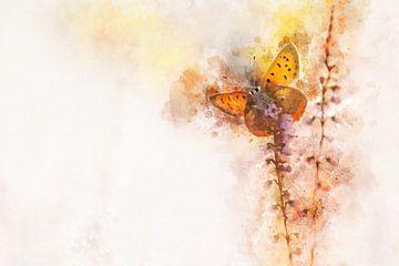 Papillon 16 sur
