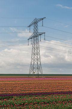 Tulpen in der Nähe eines Hochspannungsmastes von Patrick Verhoef