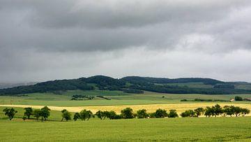 Landschap Vogezen von