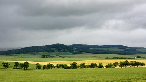 Landschap Vogezen