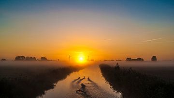 De vroege vogels van Bartlehiem van Sparkle King