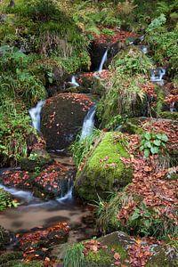 Kleine waterval in de Vogezen