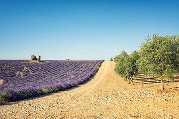 Het zuiden van Frankrijk van Manjik Pictures