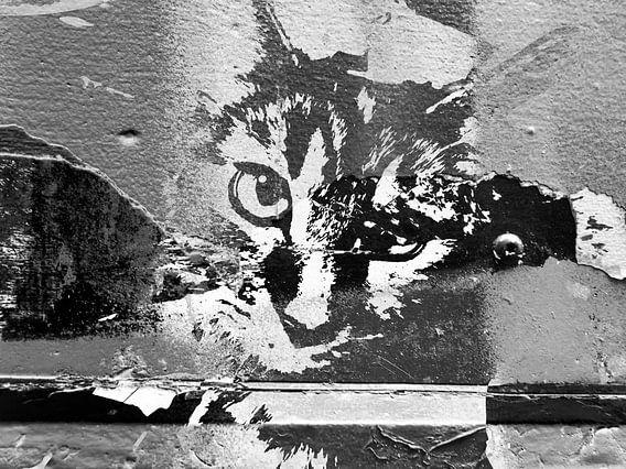 Kattenkunst - Diva 3 van MoArt (Maurice Heuts)