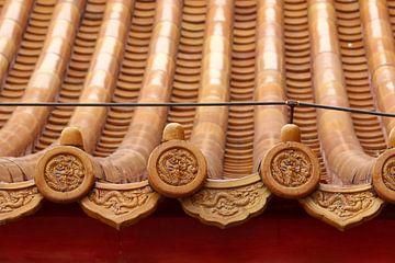 Dach in die Verbotene Stadt in Beijing, China von Ingrid Meuleman