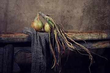 Stilleben von Zwiebeln aus dem Land... (juun of tland) von Els Fonteine