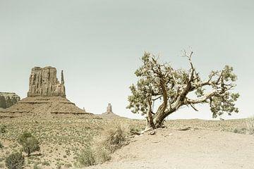 MONUMENT VALLEY West In het midden van een butte en boom | Vintage van Melanie Viola