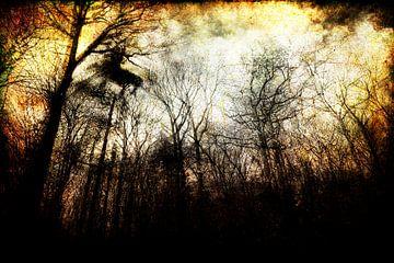 bedrohlicher Wald von Peter Baak